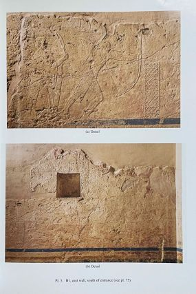 The cemetery of Meir. Vol. I: The tomb of Pepyankh the Middle. Vol. II: The tomb of Pepyankh the Black. Vol. III: The tomb of Niankhpepy the Black. Vol. IV: The tomb of Senbi I and Wekhhotep I (complete set)[newline]M8137a-30.jpeg