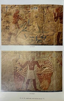 The cemetery of Meir. Vol. I: The tomb of Pepyankh the Middle. Vol. II: The tomb of Pepyankh the Black. Vol. III: The tomb of Niankhpepy the Black. Vol. IV: The tomb of Senbi I and Wekhhotep I (complete set)[newline]M8137a-31.jpeg