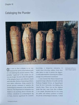 Deir el-Balah. Uncovering an Egyptian outpost in Canaan from the Time of the Exodus.[newline]M8312-15.jpeg